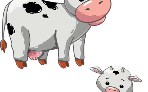 牛年张姓宝贝起名大全-尚名网-牛,动物照,